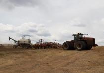 Счетная палата Бурятии проверила эффективность и целевое использование бюджетных средств, направляемых в 2016-2018 годах по линии Минсельхозпрода на развитие агропромышленного комплекса