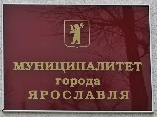 Названы самые богатые депутаты муниципалитета Ярославля