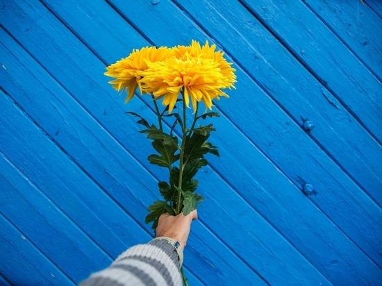 Какой цветок съесть, чтобы наполниться красотой