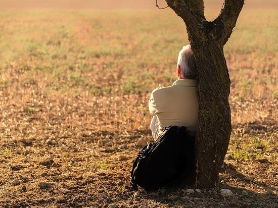Волк-одиночка: представители каких знаков легко обходятся без любви