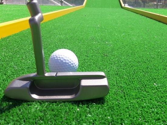 Как выбрать мини гольф