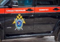 Кузбассовец убил друга детства за сорванный секс