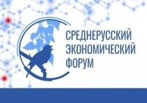 24 мая 2019 г. прошел Оргкомитет VIII Среднерусского экономического форума.
