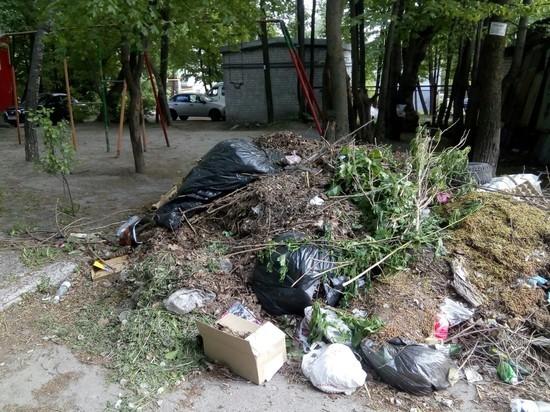 До 1 июня в Ульяновской области уберут оставшийся от субботников мусор