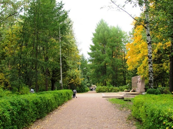 В одном из парков Петербурга нашли пакет с мертвым младенцем