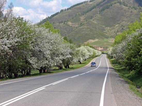 Чуйский тракт: от вьючной тропы к современной трассе