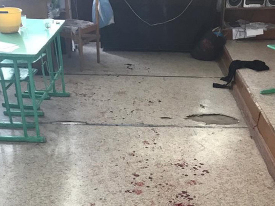 В вольской школе подросток напал с топором на шестиклассницу. Подробности