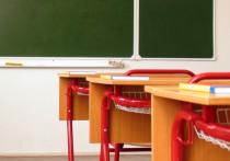 В соцсетях появился ужасный ролик из вологодской школы: второклассник Андрей (имя изменено) угрожает «сломать голову» учительнице и бьет ее по руке
