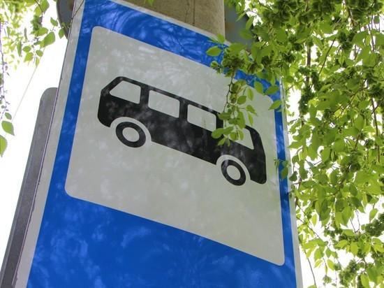 Кричу, где хочу: реально ли привязать маршрутки к остановкам в Чите