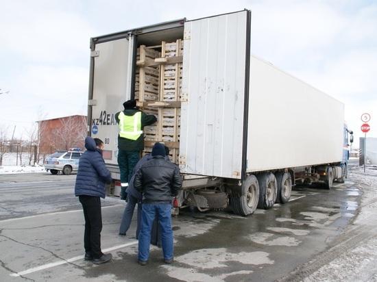 В НСО опять уничтожили 19 тонн польских яблок из Казахстана