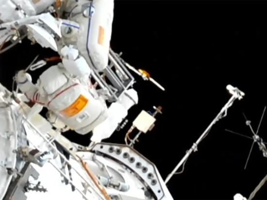 Провисевшее в открытом космосе 10 лет махровое полотенце спустят на Землю