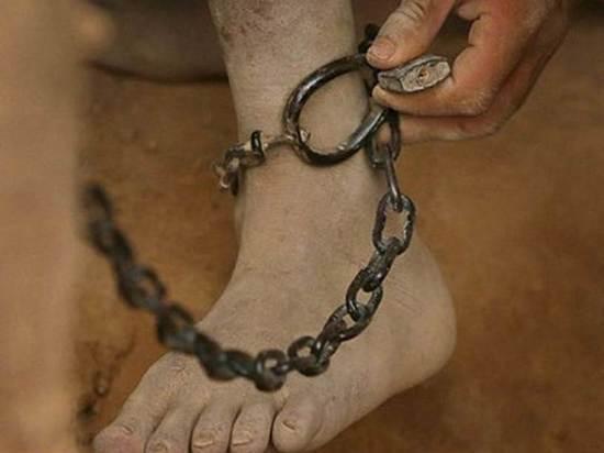 В Ярославле начался суд над родителями, сажавшими ребенка на цепь