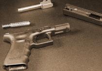В Нью-Джерси признал себя виновным в незаконном вывозе оружия иммигрант из бывшего СССР