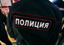 В Тверской области москвич наворовал садового инвентаря на 20 тысяч