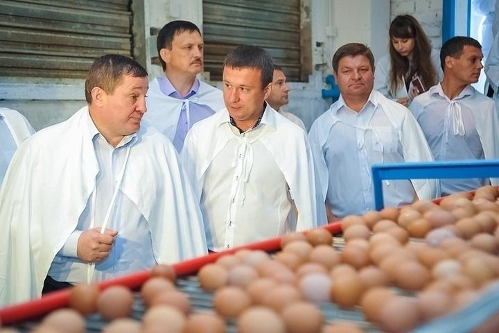 С господдержкой растет производство на птицефабрике в