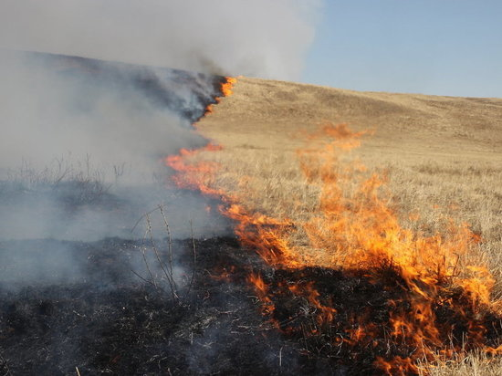 Высокая пожароопасность ожидается в некоторых районах Калмыкии