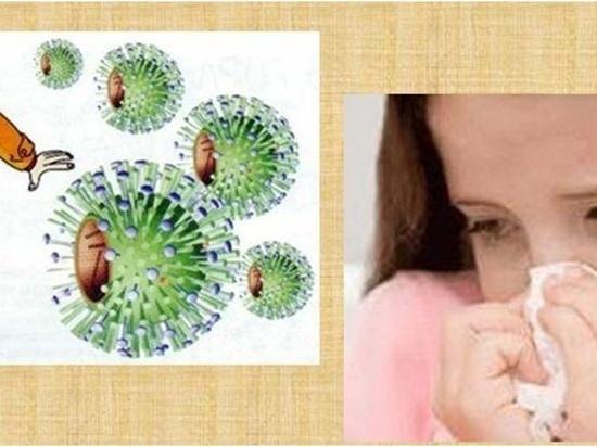 В Калмыкии зарегистрированы случаи энтеровирусной инфекции