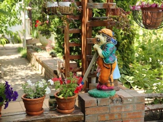Все в сад: как устроить летние каникулы домашним цветам