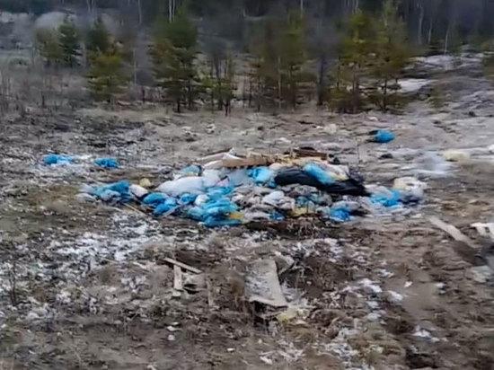 Свалку из куриных трупов обнаружили в Ноябрьске