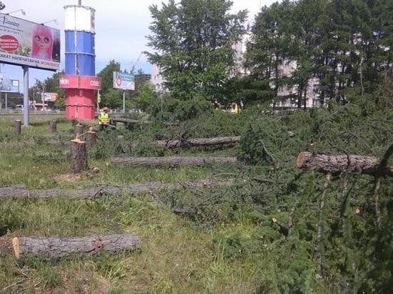 В челябинском сквере на пересечении Дарвина и Блюхера спилили 20 деревьев