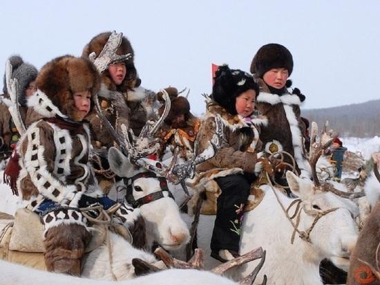 В сети появились «Хранители Арктики»