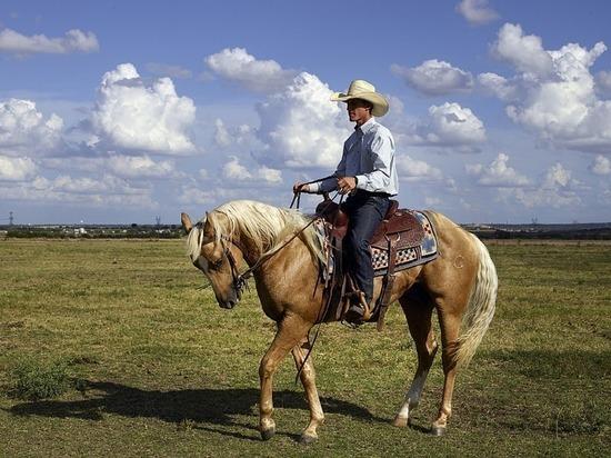 В Татарстане поселился техасский фермер