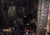 В Воронежской области на пожаре погибли два человека