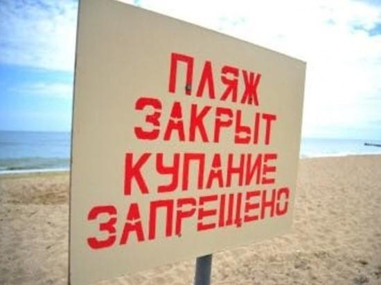 Не успели открыть, а уже закрыли: в Ярославле закрыли два пляжа