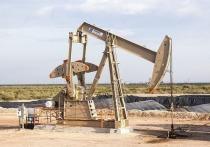 Кто будет выплачивать штраф за загрязненную нефть?