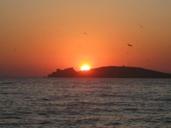 Летний отдых в Крыму оказался дороже поездки в Италию