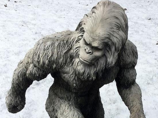 ФБР обнародовало документы об исследовании образцов вероятного снежного человека