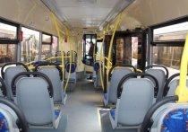 В Новороссийске 163 единицы общественного транспорта оснастили кондиционерами
