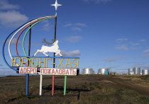 ПОРА сделать экологические требования нормой ведения бизнеса в Арктике