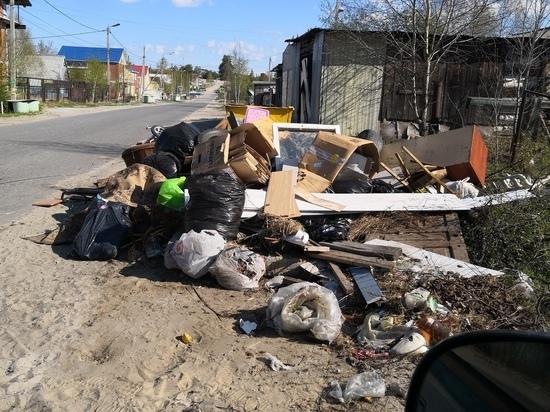 Житель Ноябрьска сообщил о мусорных завалах