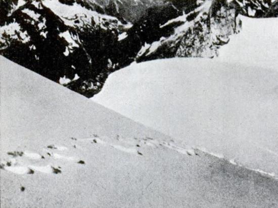 ФБР рассекретило досье снежного человека: в России нашли его «автографы»