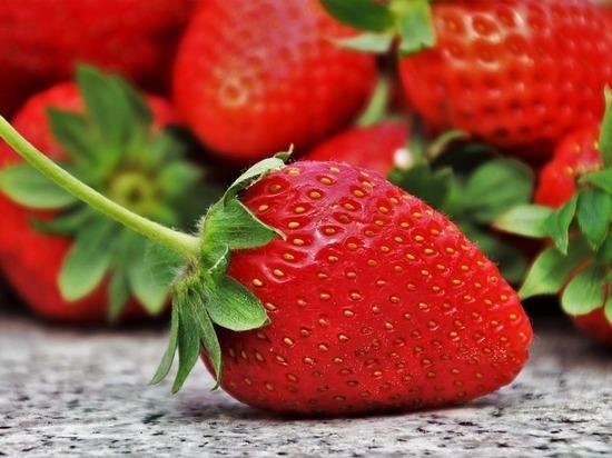 В Ставрополе овощи и фрукты можно будет купить дешевле