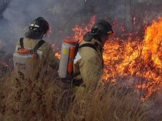 В Ивановской области девять тысяч кв. метров леса тушили 33 спасателя