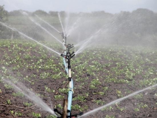 В 2019 году Ставрополье получит более 10 тысяч га орошаемых земель