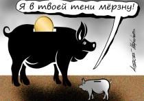 Голикова пожаловалась на «серые» зарплаты: украли у России 15 трлн