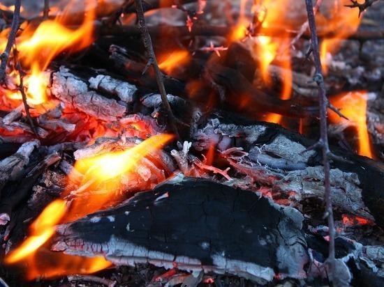 Московский изобретатель придумал новый способ разжигания углей для шашлыка