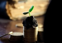 Эксперты прогнозируют подъём экономики и рост зарплат в регионах СКФО