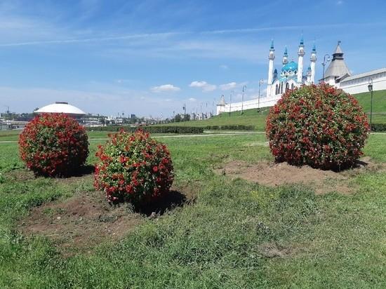 Возле Казанского Кремля появились гигантские цветочные шары
