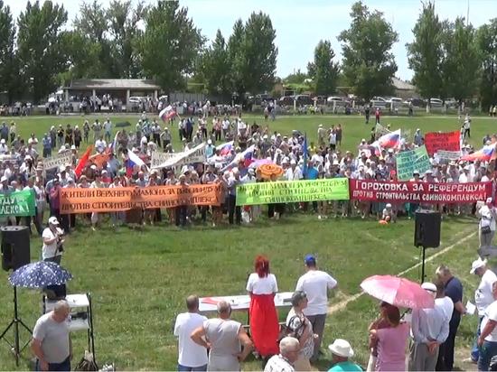 В Верхнем Мамоне прошел митинг против строительства свинокомплекса