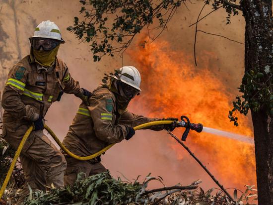 В Богучанском районе загорелся штабель леса рядом с населенным пунктом