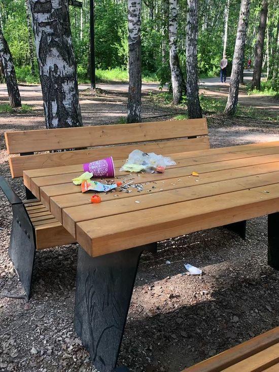 «В парке нет официантов»: красноярцы жалуются на горы мусора в «Гремячей Гриве»