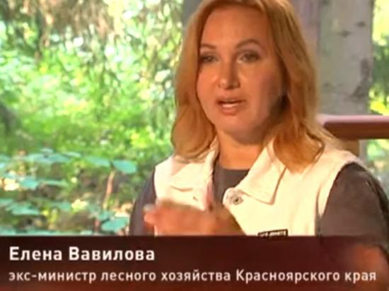 Обвиняемая в махинациях экс-министр рассказала о хищениях леса в Красноярском крае