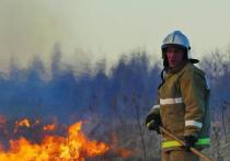 В День России в Ивановской области сгорели два больших дома, два автомобиля, баня и лесной массив