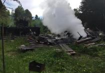 Возбуждено дело о пожаре в саду под Нижним Тагилом
