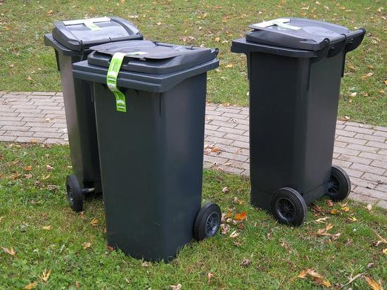 Наталья Комарова предложила использовать международный опыт по переработке отходов