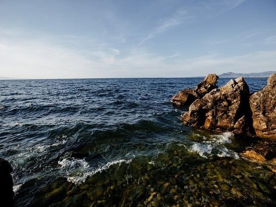 В Бурятии на Байкале нашли 500 мертвых бычков и рачков